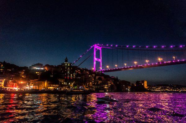 59/366 Bosphorus Bridge
